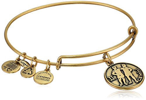 Gold Tone Bangle Womens - Alex and Ani Gemini II Expandable Rafaelian Gold-Tone Wire Bangle Bracelet, 7.25