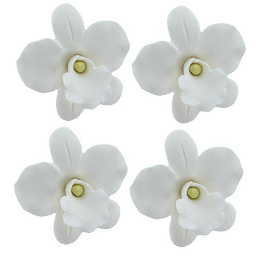 African Orchid, White, 6 Count by Chef Alan Tetreault