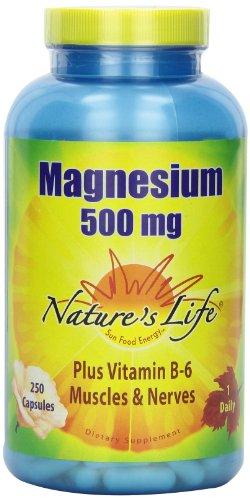 Nature's Life Magnesium Capsules, 500Mg, 250 Count