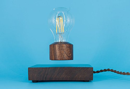 Levitating Light Bulb by Levitation Arts, Inc.