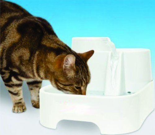Cat Water Drinking Fountain with 2 Filters (Feline Water Fountain compare prices)