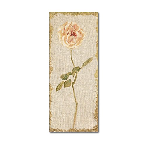 Pale Rose Panel on White Vintage v2 by Cheri Blum, 10x24-Inch Canvas Wall Art
