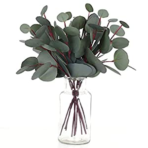 Woooow 8 Pack Artificial Eucalyptus Round Leaf Floral Stem Faux Greenery Silver Dollar Eucalyptus Leaf Spray for Wedding Bouquet Party Home Craft Decor 102