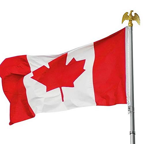 Gatton Canadian Flag 3 x 5 ft Polyester Canada Maple Le Banner Indoor Outdoor Grommet   Model FLG - ()