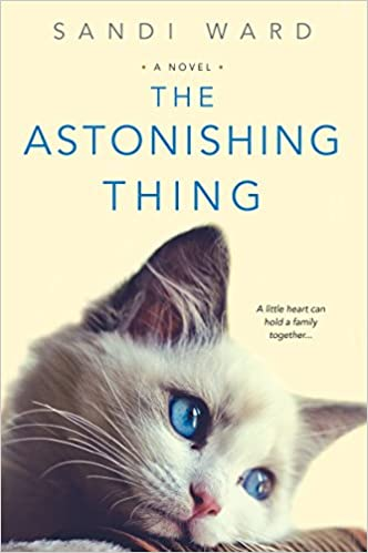 The Astonishing Thing: Sandi Ward: 9781496711113: Amazon com
