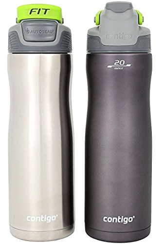 Contigo AUTOSEAL 20 Ounce Stainless Steel Water Bottle, 2 Pack, Gunmetal (Gray)