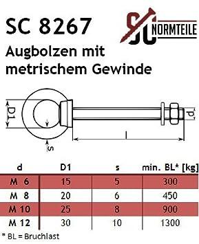 Gewindel/änge: 100 mm SC-Normteile/® - aus Edelstahl A4 V4A SC8267 Augbolzen mit metrischem Gewinde - Ringschraube//Augenbolzen - M10 x 100 mm - 2 St/ück