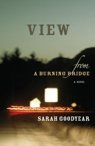 Read Online VIEW FROM A BURNING BRIDGE ebook