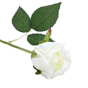 BalsaCircle 24 Cream Silk Single Stems Roses - Artificial Flowers Wedding Party Centerpieces Arrangements Bouquets Decorations Supplies 60