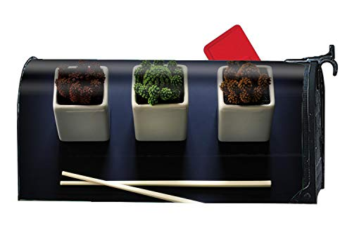 Cactus Species Bowls Chopsticks Magnetic Mailbox Covers, Suitable for Spring, Summer, Fall/Autumn and Winter