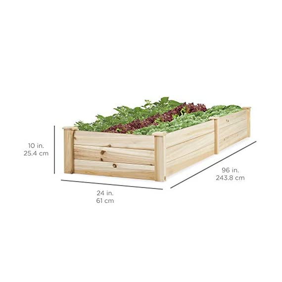 Best Choice Products Vegetable Raised Garden Bed Patio Backyard Grow Flowers Elevated Planter 6 8' x 2' garden bed is perfect for growing your plants and vegetables Comes with a divider in the middle so you can separate it into 2 garden bed boxes Boards are made of 0.5 inch thick solid wood that is built to last through the seasons
