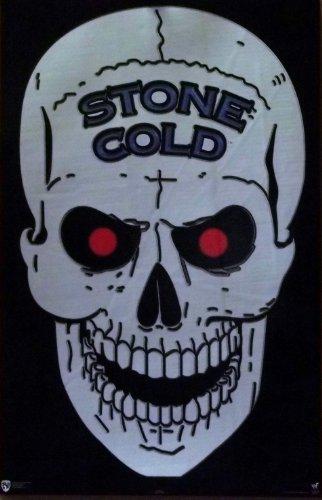 Stone Cold Steve Austin 22x34 WWE WWF Skull Poster 1998