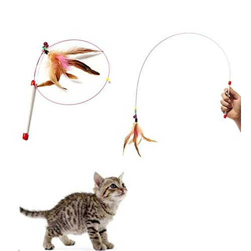 Puppy Cat Creative Feathers Funny Cats Wire Rods Flying Bell Favorite Toy Active Dancer Hanger That Refillable Scratch Green Bird Dinosaur Dollars Puzzle Seen Pointer Mouse Uni (My Toy Bird Ring Bell)