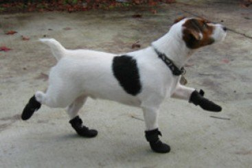 WalkAbout ウォーカーブーツ XL 大型犬用 足になじむ ペット用靴 足保護ブーツ ペット介護 伸縮性 防水性 B00EOK4G70  S S