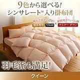 9色から選べる シンサレート入り掛け布団 クイーンサイズ (色:モカブラウン) tu-38748  寝具専用シンサレート™を使用 掛布団