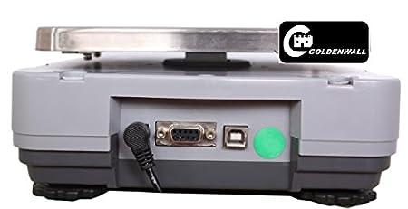 CGOLDENWALL - Báscula digital de cocina RS232 de 0,01 g para contador electrónico de precisión de joyas y alimentos 4200g/0.01g: Amazon.es: Oficina y ...