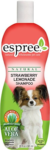 Espree Strawberry Lemonade Shampoo, 20 oz