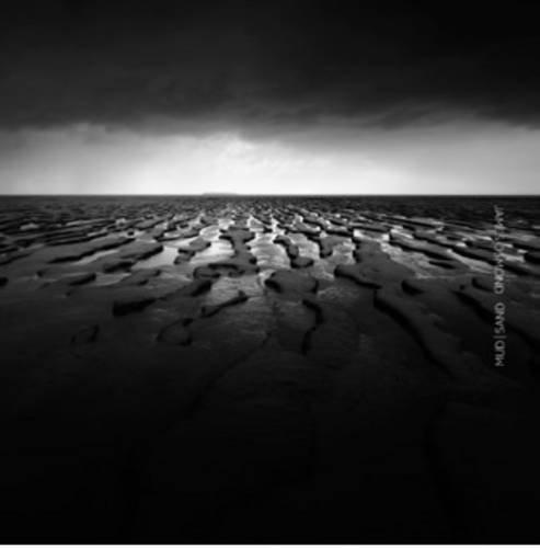 Download Mud  Sand (Discovery) pdf epub