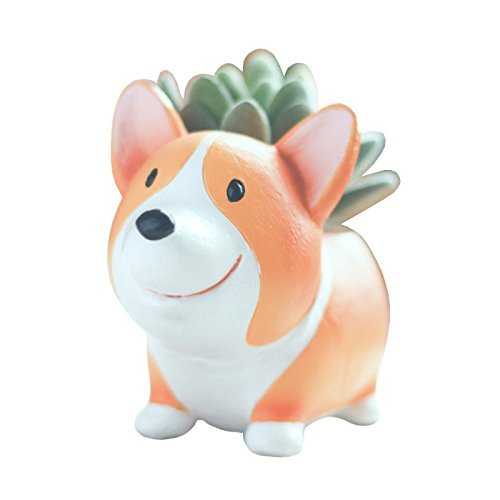 Youfui Cute Dog Flowerpot Resin Succulent Planter Desk Mini Ornament (Crogi A)