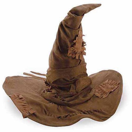 Harry Potter Sorting Hat Child Halloween Accessory Brown (Harry Potter Halloween Decorations)