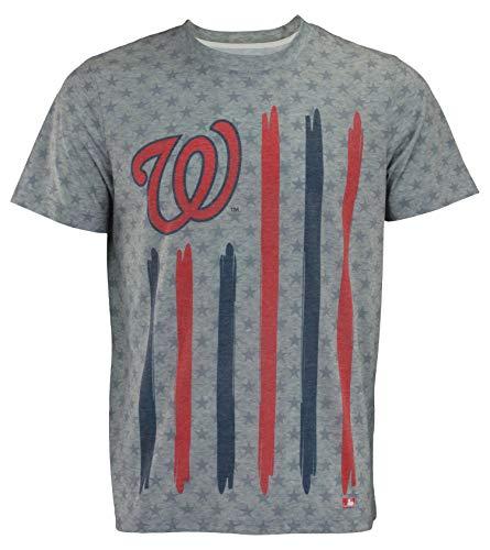 MLB Men's Big Logo Flag Tee, Washington Nationals X-Large