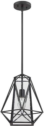 Luminance F3420-31 1-Light Black Pendant