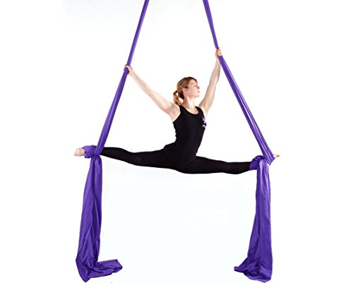 F.Life Aerial Silks For Aerial yoga Hommock Or Aerial Acrobatics (10 yards) with the Equipment ,Guide (Dark Purple)