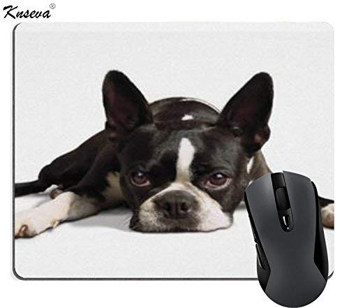 (PROEVER Boston Terrier Poster Print Mouse Pad Dog Mouse Pads)