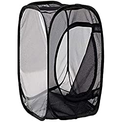 Gmgod❤️❤️Portable Collapsible Open Insect and Butterfly Perch cage Glass Container Black