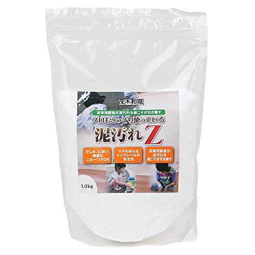 Amazon.com: Mud Dirt Detergent Professional Kazuya Motegi Also Secretly are Using