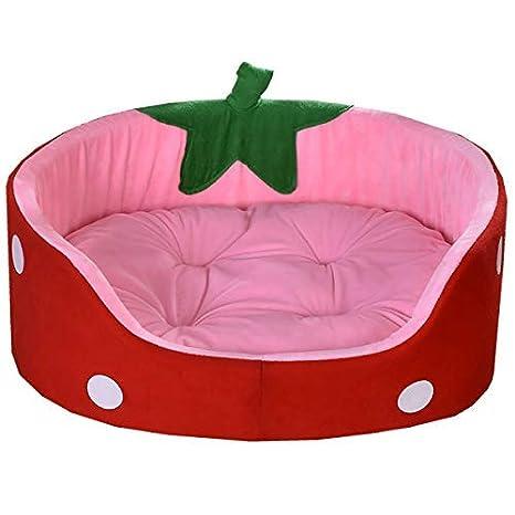 Divine Shield: caseta para perro, gato con forma de fresa, sandía y piña, con posibilidad de añadir un cojín: Amazon.es: Productos para mascotas