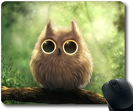 Amazoncom Gaming Mouse Pad Owl Shower Curtain Cute Owl