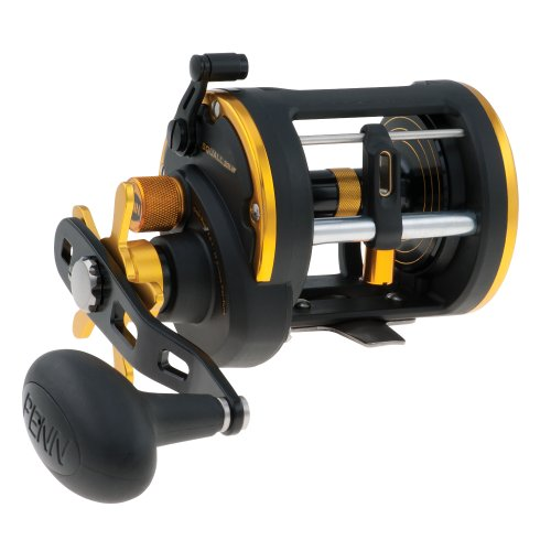 Penn SQL20LW Squall LevelWind (Old Penn Fishing Reels)