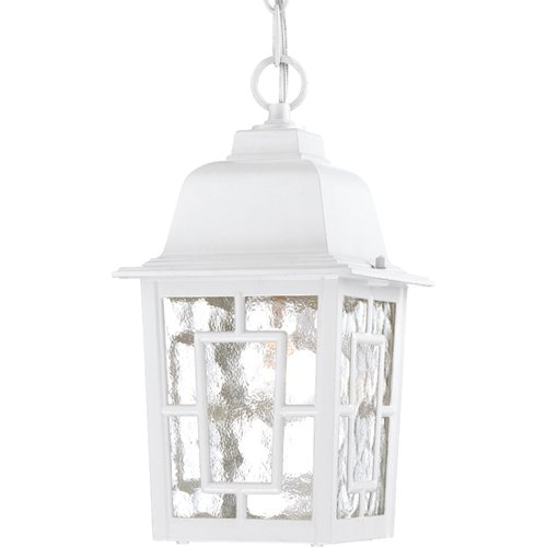 Nuvo Lighting 60/4931 Banyon One Light Hanging Lantern 100 Watt A19 Max. Clear Water Glass White Outdoor Fixture (Fixtures Hanging Indoor Light)