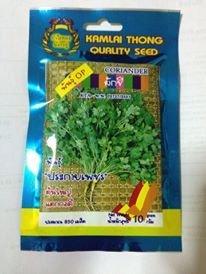 Thai Organic Coriander Seed (1,110 Seeds).