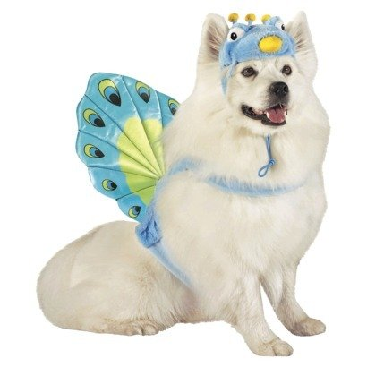 Peacock Pet Dog Costume - Size Large - 25 - 50 lbs by Target ()