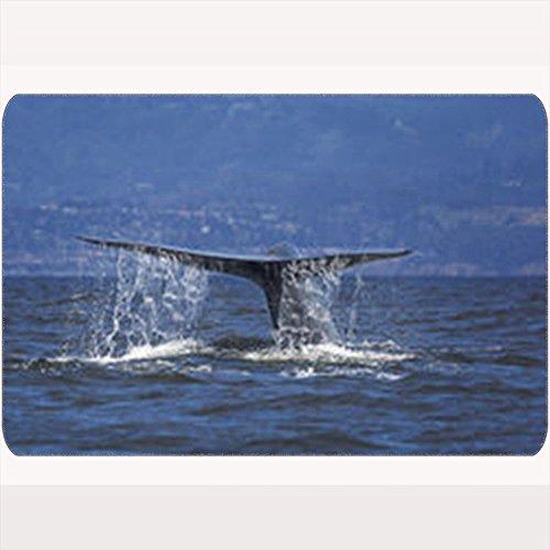 Monterey Entrance - Custom Welcome Doormat Blue Whale Dives Into Waters Monterey Animals Wildlife Activity Nature Floor Entrance Rug 16X24 Inches Indoor/Outdoor/Front Door Bathroom Mats Rubber Non Slip
