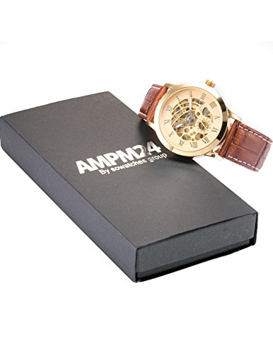 AMPM24 Luxury Automatic Mechanical Brown Strap Men's Gold Dial Skeleton Wrist Watch PMW077