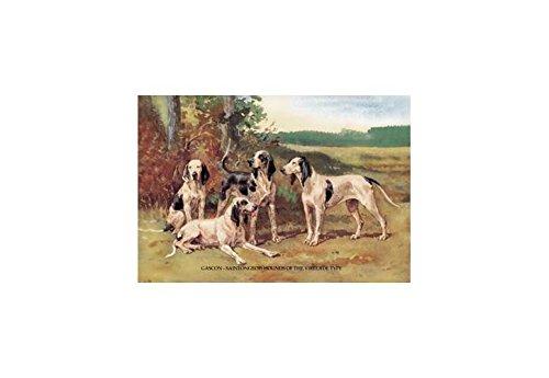 Buyenlarge Gascon-Saintongeois Hounds of The Virelade Type Print (Canvas 12x18) ()