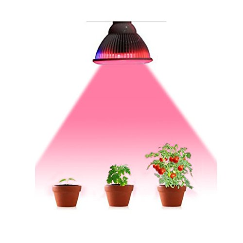 Lights OrgMemory Efficient Hydroponic Aquatic