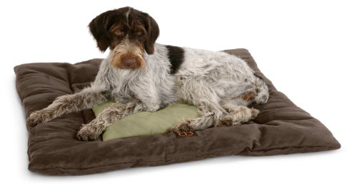 Petego Velvety Waffle Square Pet Bed, Large, Espresso/Sage, My Pet Supplies