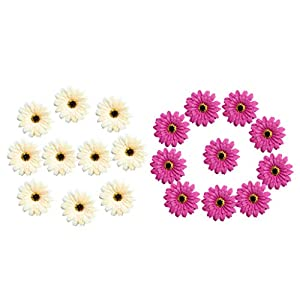 SM SunniMix Silk Artificial Daisy Heads Flowers Head Wedding Decoration DIY Wreath Gift Box Decor Purplish Red & Champagne Pack of 20 19