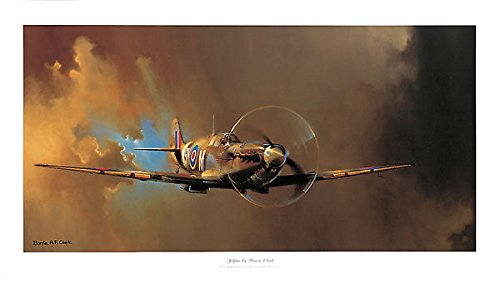 Spitfire Barrie Clark Vintage Military Airplanes Aircraft WWII British Poster 39.75x23