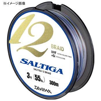 Daiwa(ダイワ) ソルティガ 12ブレイド 300mの商品画像