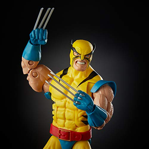 Hasbro Marvel Legends Wolverine and Hulk 6-Inch Action Figure 2-Pac Standard