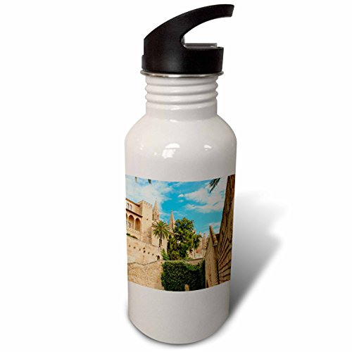 3dRose Danita Delimont - Cities - Spain, Balearic Islands, Mallorca, Palma de Mallorca, stone towers - Flip Straw 21oz Water Bottle (wb_277905_2) by 3dRose