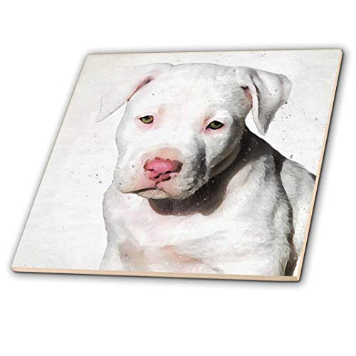 3dRose 3D Rose American Staffordshire Terrier Pit Bull Puppy Watercolor - Ceramic Tile, 12-inch (ct_245337_4),