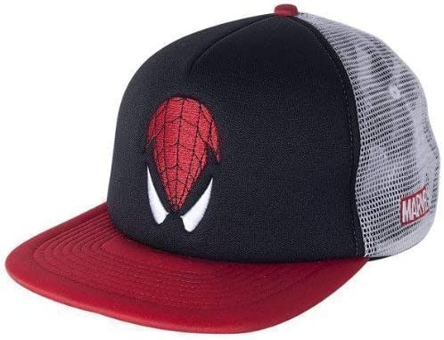 Addict Marvel Spiderman Vision CAMIONERO Gorra Snapback: Amazon.es ...