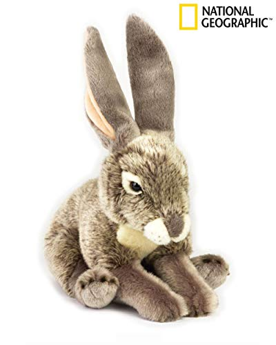 NATIONAL GEOGRAPHIC Hare Plush