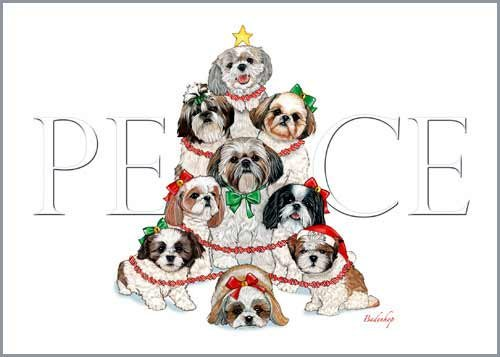 Shih Tzu Christmas Cards : 10 Holiday Cards with White Envelopes - ADORABLE!